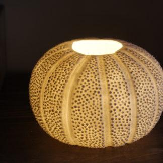 Lampe Oursin porcelaine